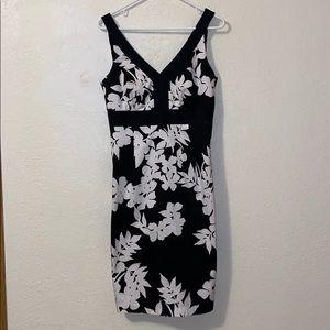 White House Black Market Sun Dress